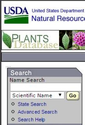 Guide on the Side @ SU Libraries: USDA Plant Search