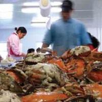 Crab Pickers.jpg